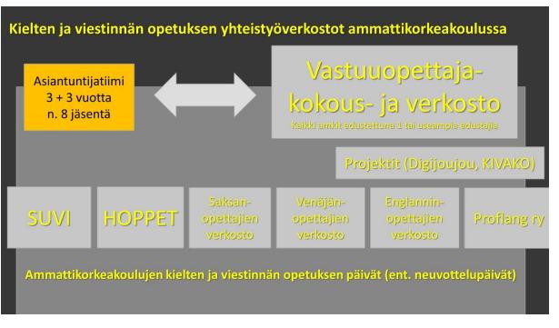 Kielten ja viestinnän opetuksen yhteistyöverkostoihin ammattikorkeakouluissa kuuluu muun muassa SUVI, HOPPET, Saksanopettajien verkosto, Venäjänopettajien verkosto, Englanninopettajien verkosto ja Proflang ry.